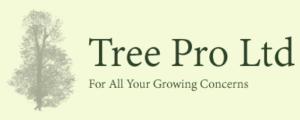 Tree Pro Ltd maidstone tree surgeon